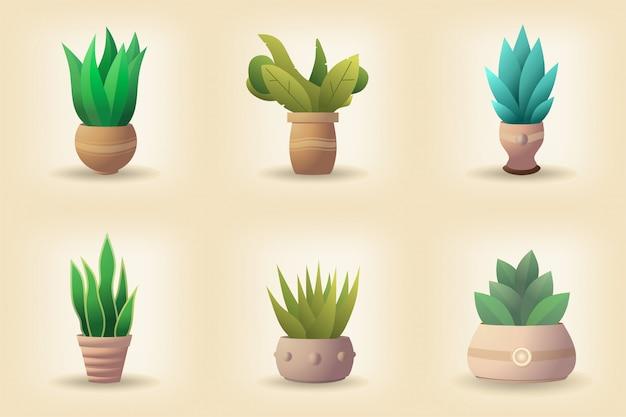 Set van groene plant in een pot