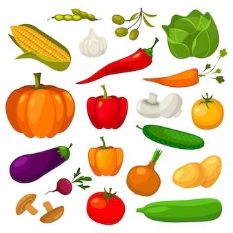 Set van groenten geïsoleerd op wit