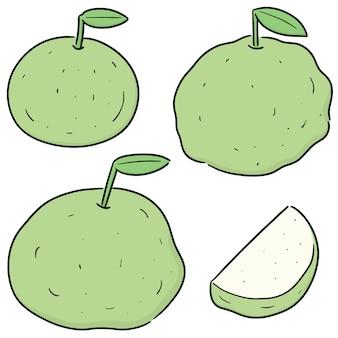 Set van guave