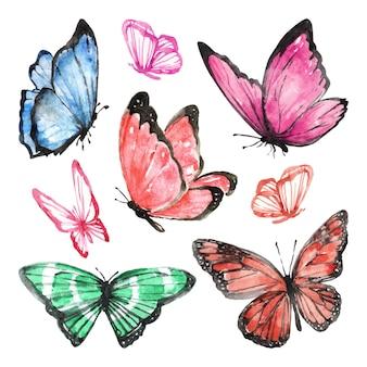 Set van handgetekende aquarelvlinders