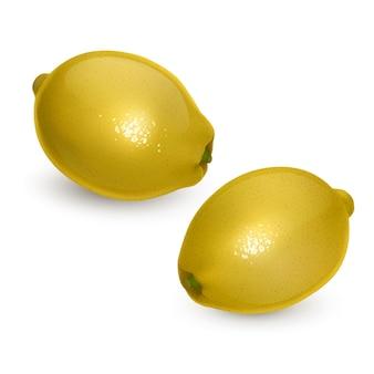 Set van hele en sappige citroenen in realistische stijl