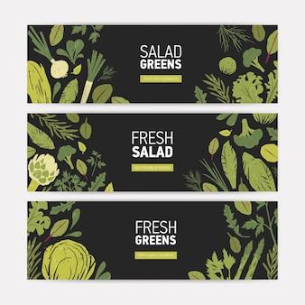 Set van horizontale banner websjablonen met groene groenten, verse slablaadjes en specerijen kruiden op zwart