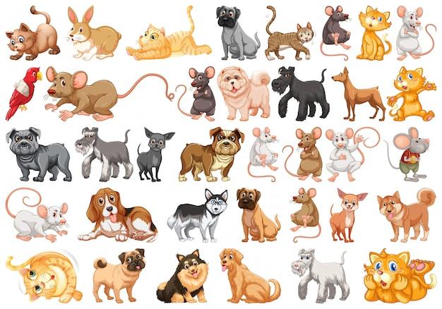 Set van huisdier karakter