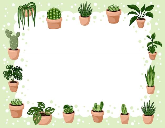Set van hygge ingemaakte succulente planten.