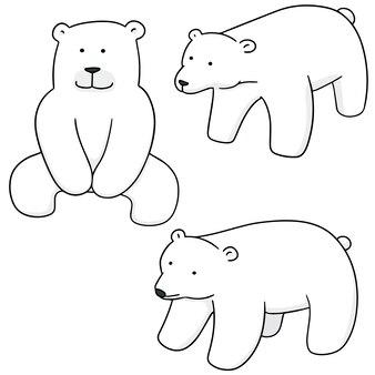 Set van ijsbeer