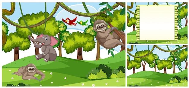Set van jungle dieren scènes