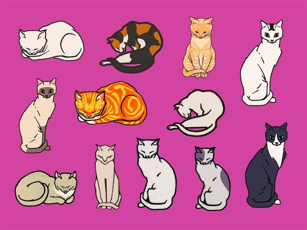 Set van katten