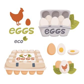 Set van kippen- en kwarteleitjes in verschillende vormen rauw gekookt en gebakken en in kartonnen dozen