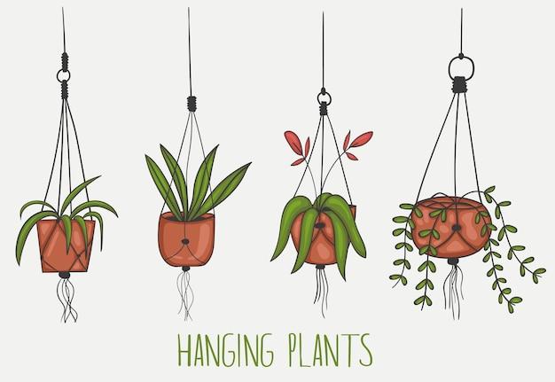 Set van kleurrijke hand getrokken hangende planten illustratie