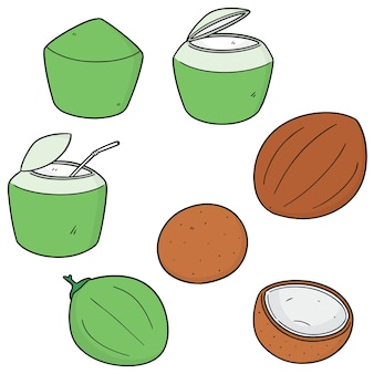Set van kokosnoot