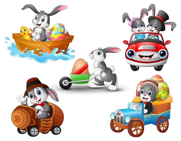 Set van konijn cartoon rijden van het voertuig
