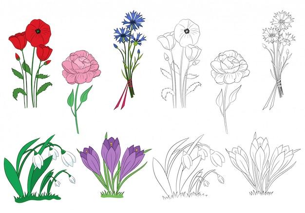 Set van lentebloemen. hand getekende sneeuwklokjes, krokussen, pioenroos, korenbloem, klaproos. bloemen overzicht.