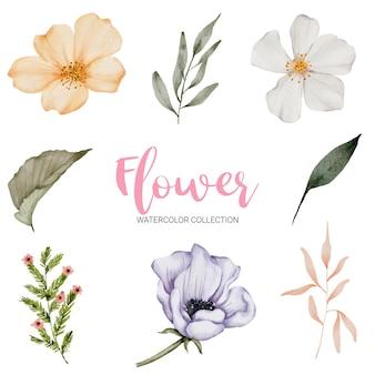Set van losse onderdelen en samenbrengen tot een prachtig boeket bloemen in aquarelstijl