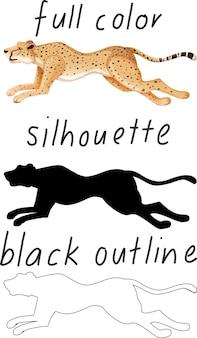 Set van luipaard in kleur, silhouet en zwarte omtrek op witte achtergrond