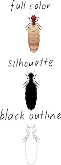 Set van mier in kleur, silhouet en zwarte omtrek op witte achtergrond