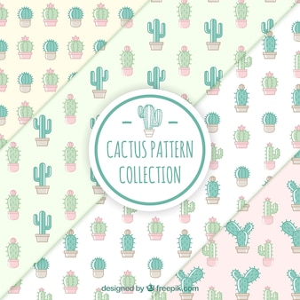 Set van mooie cactus patronen