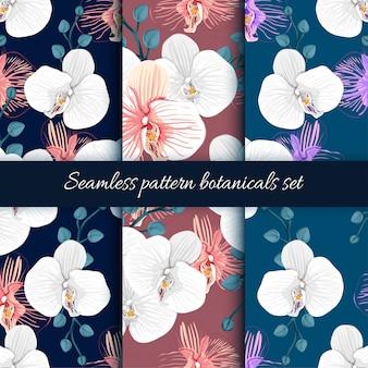 Set van naadloze patroon orchidee bloemen achtergrond.
