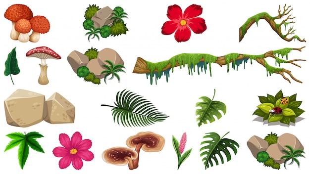 Set van natuur-object