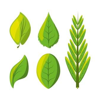 Set van natuurlijke en ecologie pictogrammen laat ontwerp