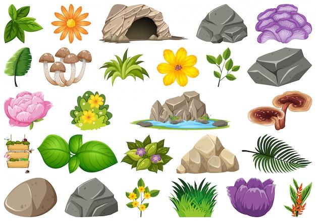 Set van natuurlijke objecten