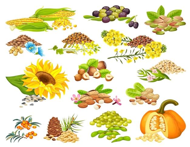 Set van noten en zaden