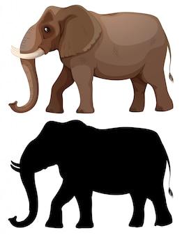 Set van olifant karakter