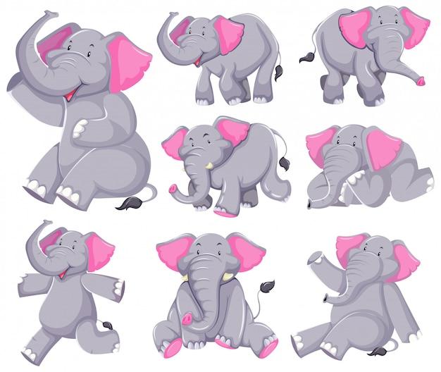 Set van olifant stripfiguur