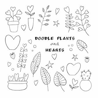 Set van overzicht vector planten in doodle stijl