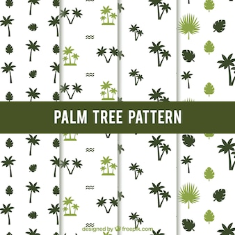 Set van palmbomenpatronen