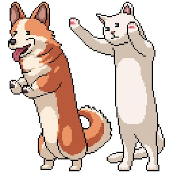 Set van pixelart geïsoleerd lange corgi en kat