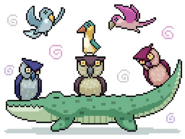 Set van pixelart geïsoleerde vriendelijke vogelgroep