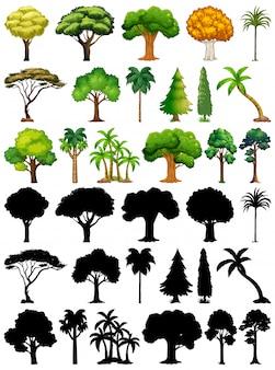 Set van plant en boom met zijn silhouet