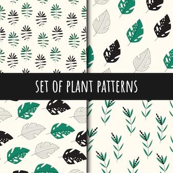 Set van plantaardige naadloze patronen