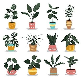 Set van planten illustratie