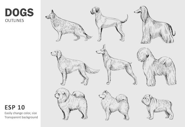 Set van populaire hondenrassen. hand getrokken illustratie geïsoleerd op wit