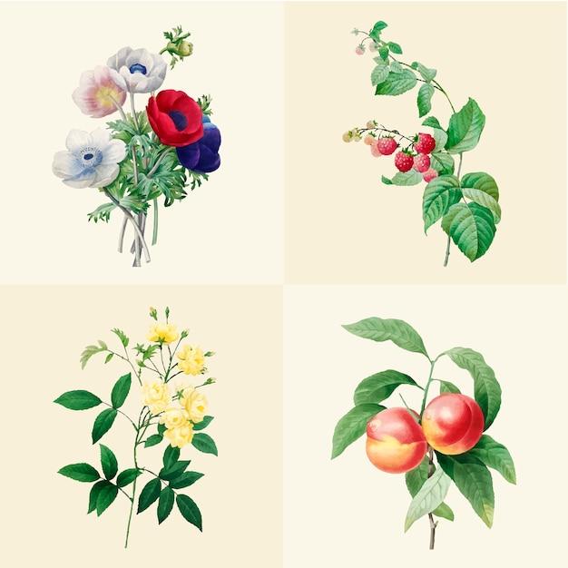 Set van prachtige bloeiende wilde bloemenpracht