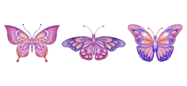 Set van prachtige handgetekende aquarel vlinders collectie