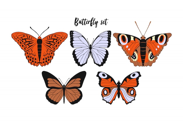 Set van realistische platte cartoon: monarchvlinder, argynnis paphia, kaisermantel, de pauw.