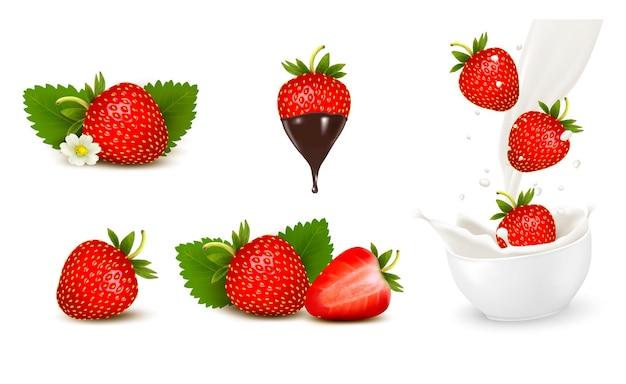Set van rijpe zoete aardbei en bloem met bladeren en scheutje melk. vector.
