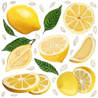 Set van sappige citroenen op een witte geïsoleerde achtergrond citrusvruchten, citroenschijfjes, bladeren en zaden