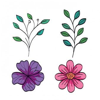 Set van schattige bloemen met takken en bladeren naturals