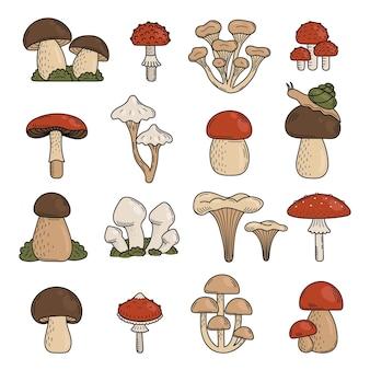 Set van schattige doodle paddestoelen eetbare en giftige paddestoelen