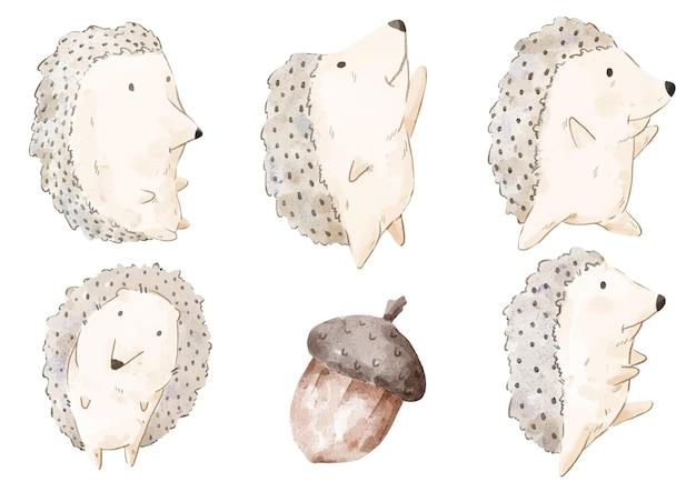 Set van schattige egel