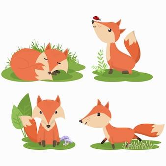 Set van schattige fox cartoon karakter illustratie