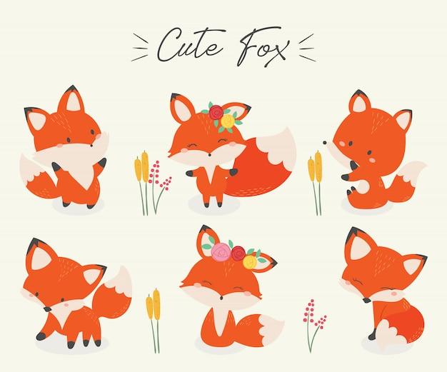 Set van schattige fox vectorillustratie.