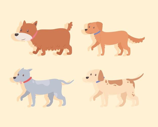 Set van schattige honden wandelen