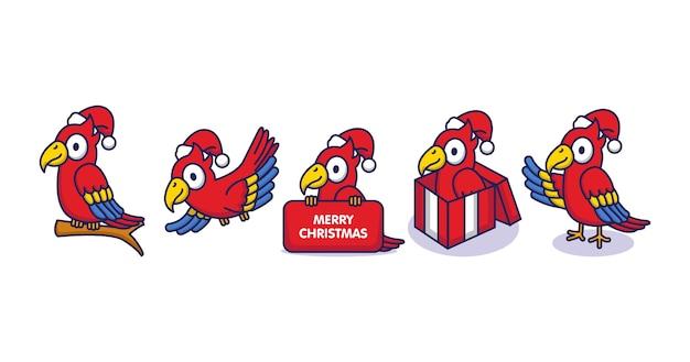 Set van schattige kerst papegaai vogels