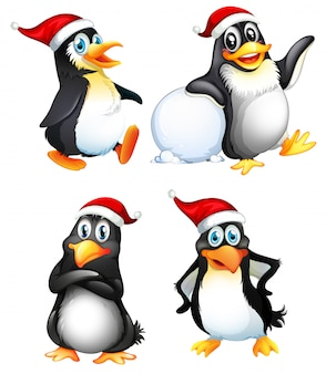 Set van schattige pinguïn karakter