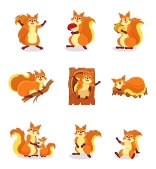 Set van schattige rode eekhoorn in verschillende acties. klein bos knaagdier. wild dier. illustraties