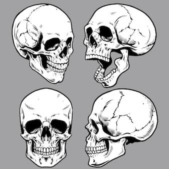 Set van schedel in de hand tekenen stijl
